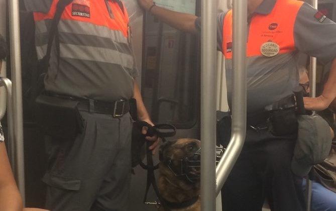 Los vigilantes de seguridad en metro de Barcelona realizaran sus servicios con chalecos anticorte
